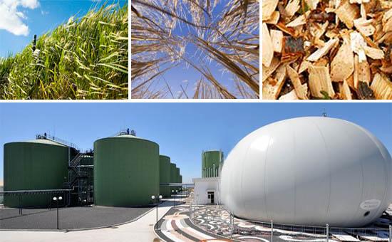 Feedstock to energy